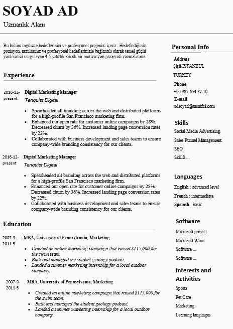 İngilizce CV